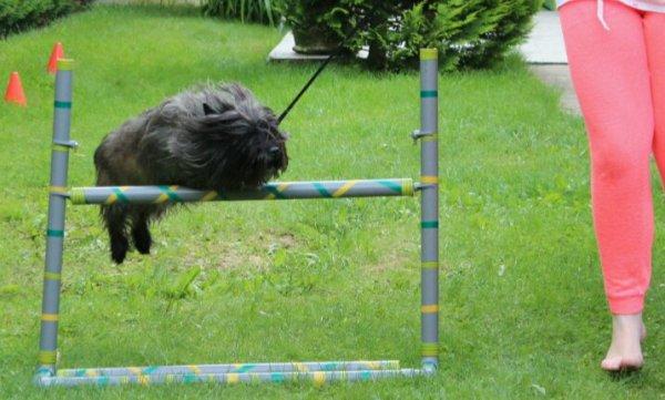 Jumping du 27.06.13 ! <3