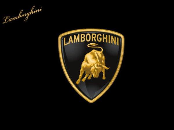 Lamborghini est un constructeur automobile fondée en 1951 par l'industriel Ferruccio Lamborghini et installé à Sant'Agata Bolognese en Italie.