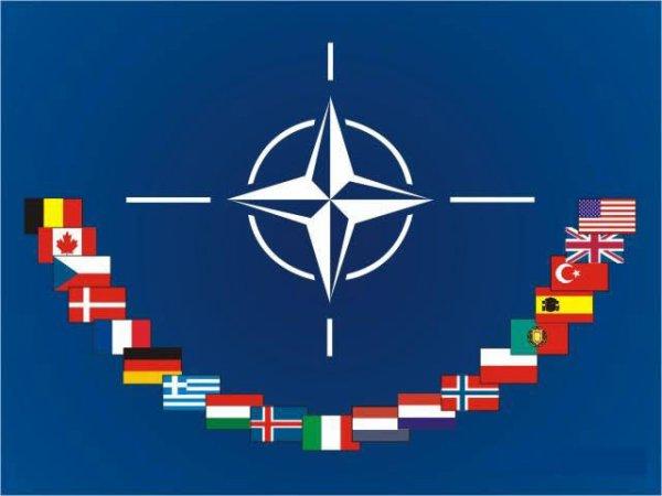 L'Organisation du traité de l'Atlantique nord (selon les standards de l'OTAN, Organisation du Traité de l'Atlantique Nord ; on écrit aussi Organisation du traité de l'Atlantique Nord ; en anglais : North Atlantic Treaty Organization) est l'organisation politico-militaire mise en place par les pays signataires du traité de l'Atlantique nord afin de pouvoir remplir leurs obligations de sécurité et de défense collectives. Elle est le plus souvent désignée par son acronyme OTAN (en anglais : NATO) mais aussi fréquemment nommée l'Alliance atlantique ou parfois, encore plus brièvement, l'Alliance.