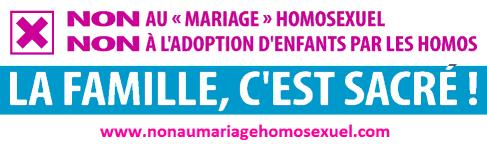 L'opposition au mariage homosexuel et à l'homoparentalité en France est constituée par l'ensemble des mouvements associatifs, politiques et religieux refusant l'ouverture du mariage civil aux couples de personnes de même sexe et l'adoption par ces mêmes couples. Cette opposition se manifeste notamment à partir du 15 août 2012, peu avant que le projet de loi dit « mariage pour tous », qui élargit le mariage et l'adoption aux couples de même sexe en France, ne soit présenté et ne devienne une loi promulguée de la République le 17 mai 2013. Au premier plan de ces mouvements, le collectif « La Manif pour tous », alors représenté par la militante catholique Frigide Barjot, organise, du 17 novembre 2012 au 26 mai 2013, des manifestations de grande ampleur contre cette mesure.