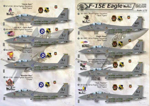 Une simulation du F-15E existe sur Flight Simulator X (sous les noms de F-15E Mudhen Driver et F-15E Eagle), et le jeu Jane's F-15, produit par Electronic Arts en 1998, décrit également avec efficacité le rôle de ce puissant avion pendant la guerre du Golfe.