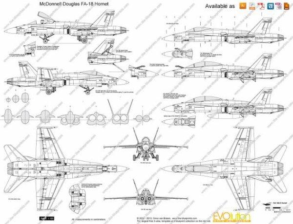 Le McDonnell Douglas F/A-18 Hornet est un avion de combat multirôle américain, initialement destiné à être embarqué à bord de porte-avions de l'US Navy. Mis en service au début des années 1980, il a pour l'instant été construit à plus de 1 500 exemplaires et exporté dans une dizaine de pays. Il est le deuxième avion de combat le plus utilisé dans le monde en 2012 avec, selon une estimation, 1 005 appareils en activité, soit 6 % de la flotte mondiale d'avions de combat. Le Boeing F/A-18E/F Super Hornet est son successeur.
