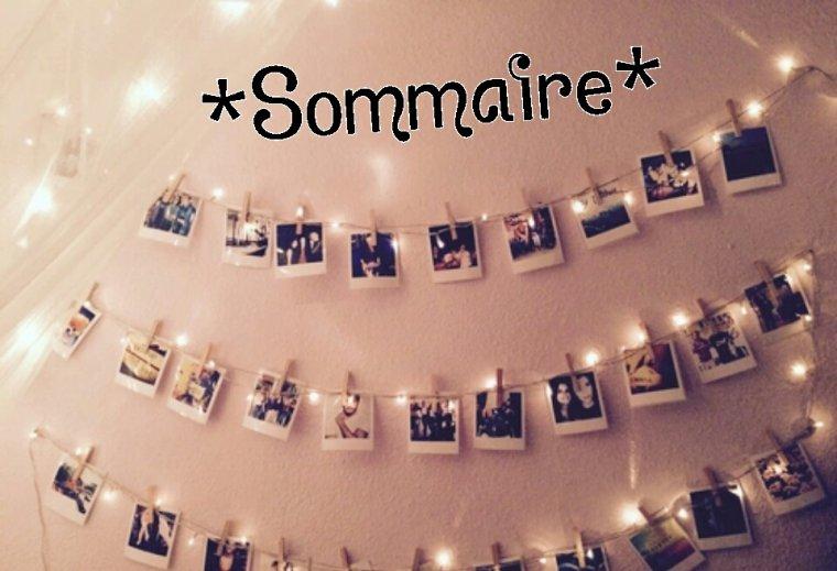 Le Sommaire De Ma Fiction ! ^-^