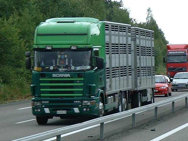 pour tout les passionés de camions