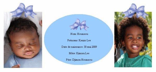 Famille Hounsou