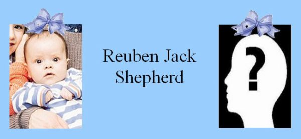 Famille Shepherd/Milewski