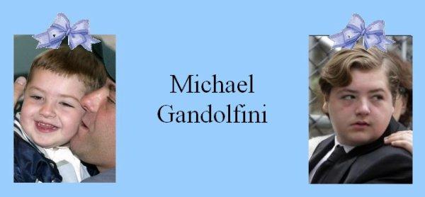 Famille Gandolfini