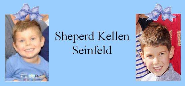 Famille Seinfeld