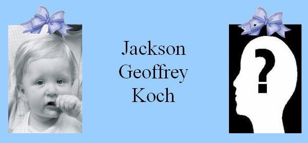 Famille Koch