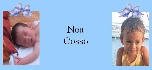 Famille Cosso
