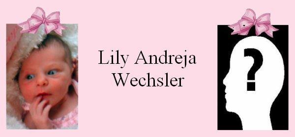 Famille Wechsler