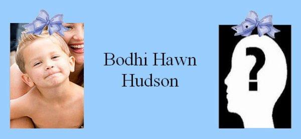 Famille Hudson