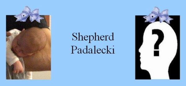 Famille Padalecki