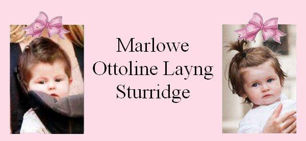 Famille Sturridge