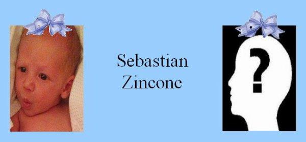 Famille Zincone