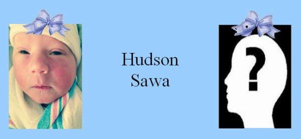 Famille Sawa