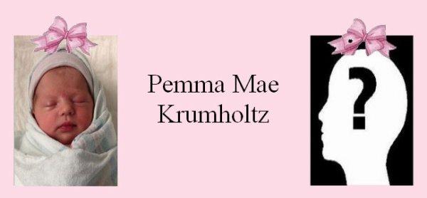 Famille Krumholtz