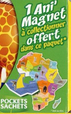 BROSSARD SAVANE: ANI'MAGNET DE L'AFRIQUE