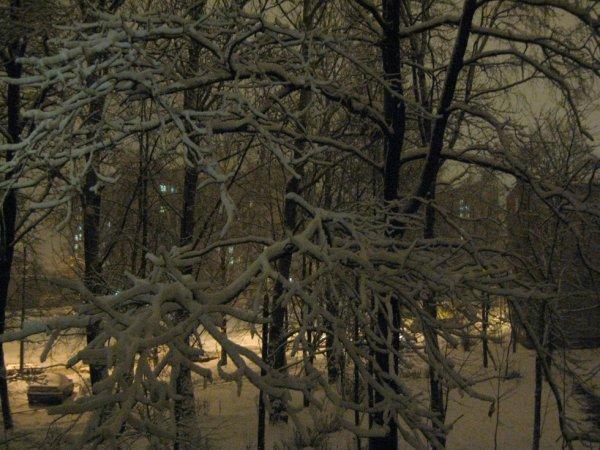 Tout comme d'habitude: court jour et long neigeux nuit