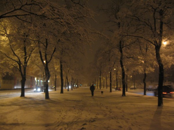 Tombe la neige, tombe la neige...