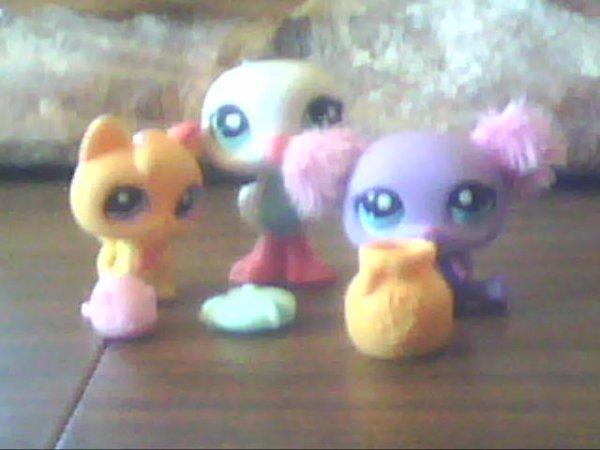 Mes 3 nouveaux Littlest PetShop :