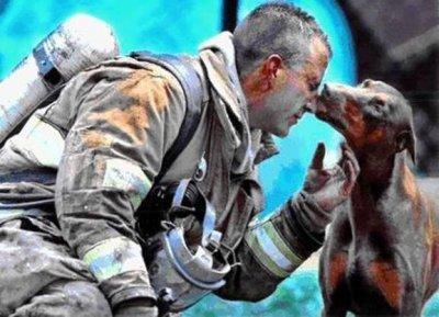 apres le sauvetage d'une chienne , cell-ci est venue remercier son sauveteur ...