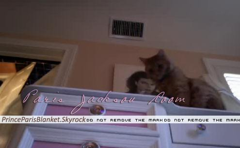 New Photo | Paris Jackson's Room with Cat