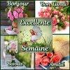 @@ excellente semaine   @@