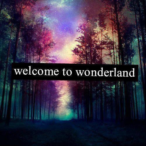 Welcome to wonderland ! (Je m'occuperai de vos inscriptions quand j'aurais le temps)