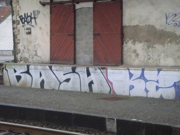 BASH KZ