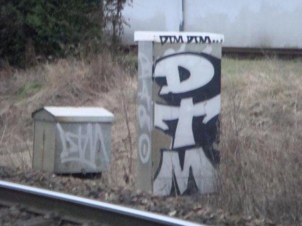 DTM CREW