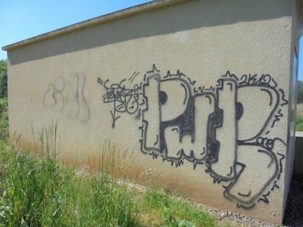 LION PWR