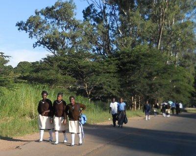 TontonPolo en Afrique suite...