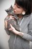 """"""" Le chat est d'une honnêteté absolue : les êtres humains cachent, pour une raison ou une autre, leurs sentiments. Les chats non."""" Ernest Hemingway"""