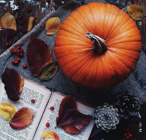[Mes indispensables n°1]: 5 indispensables de l'automne