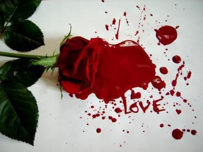 Amour ma tuer