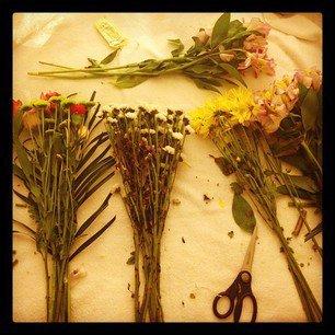 selena sur le set de spring breakers avec ashley beson et vanessa hudgens