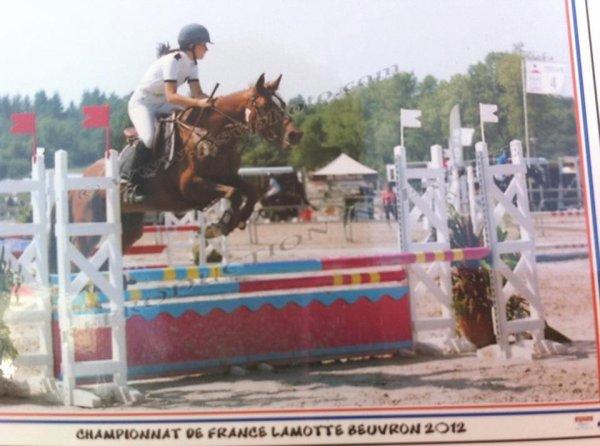 Lamotte-Beuvron 2012.