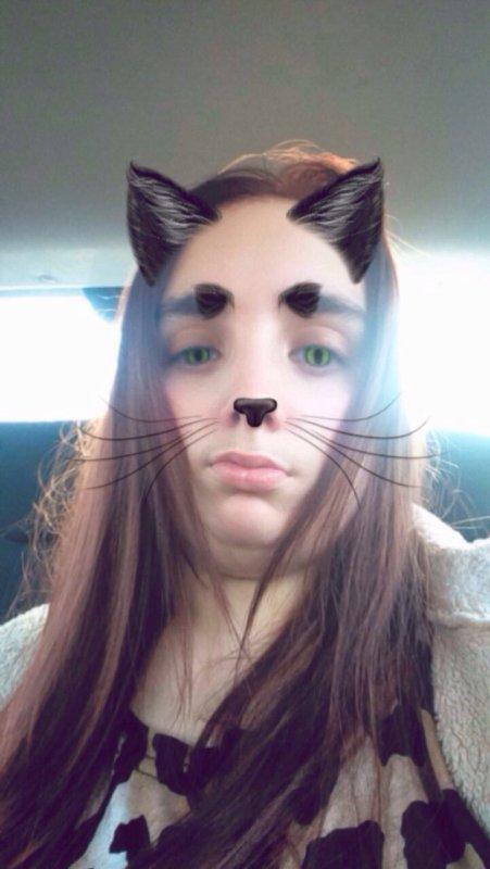 Moi en chat