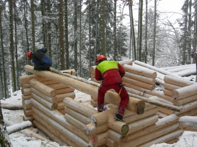 construction cabane en rondins