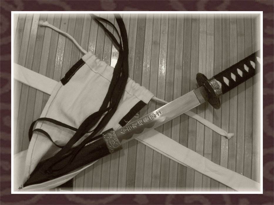 L' Iaido par Crocodildundy...la Voie du Sabre...l'Esprit du Geste