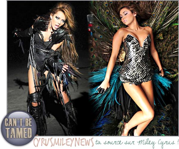 """.  Voici deux nouvelles photos du clip """"Can't Be Tamed"""" ( d'autres ici et ici ). Le clip s'annonce vraiment différent de ce que Miley a l'habitude de faire ! La première mondiale de """"Can't Be Tamed"""" se passera sur la chaîne E! ce soir pour les Etats-Unis et demain soir pour la France. + un nouvel habillage qui a pour thème le nouvel album de Miley : Cant' Be Tamed. + Miley sera à Paris le 1er juin pour la promo de son album et elle fera aussi un concert privé ! Hâte de voir le clip ? Votre avis ? ."""