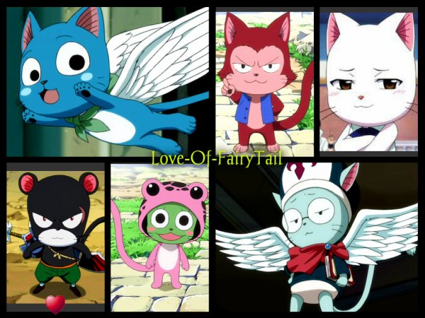 Les chats de Fairy Tail
