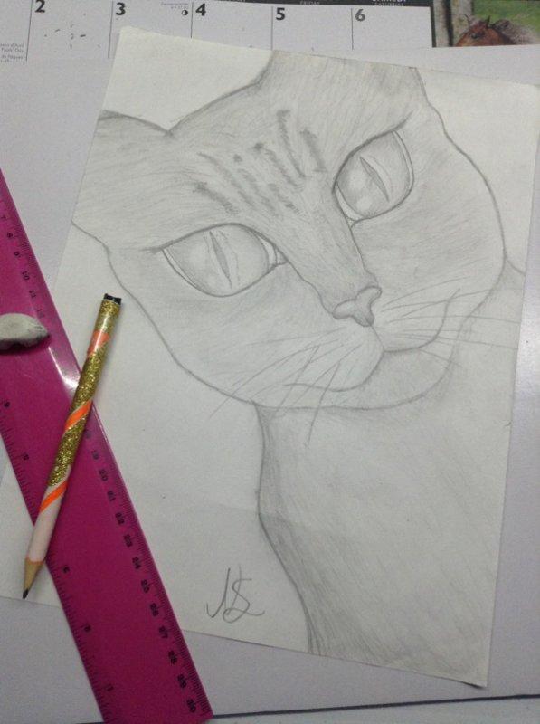 Dessin de chat que jai fait ^^