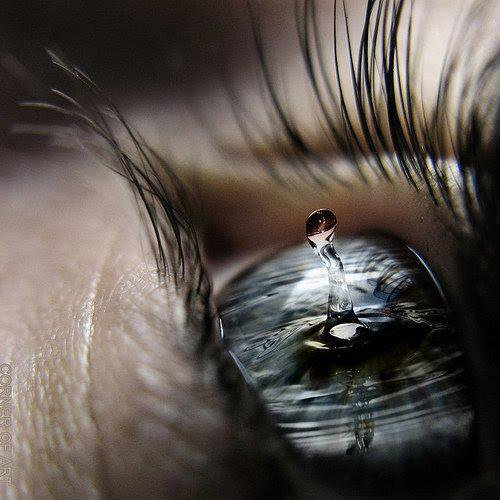 Toute les larmes du mondes sont pareilles