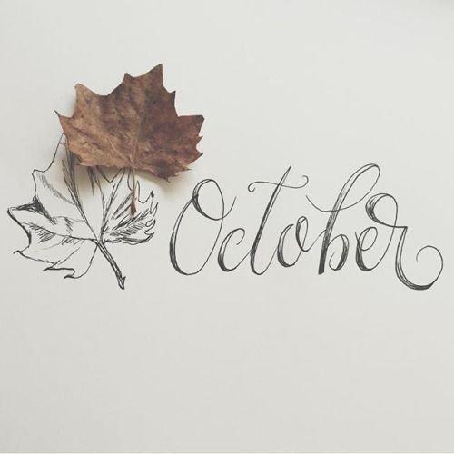Découvertes du Mois d'Octobre/17