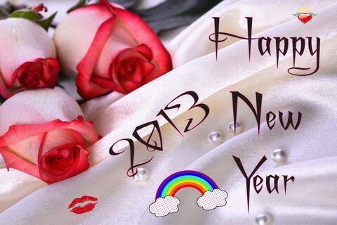 Bonne annee 2013 ( en avance )