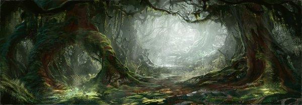 Vertbois le Grand rebaptisé Forêt Noire ...