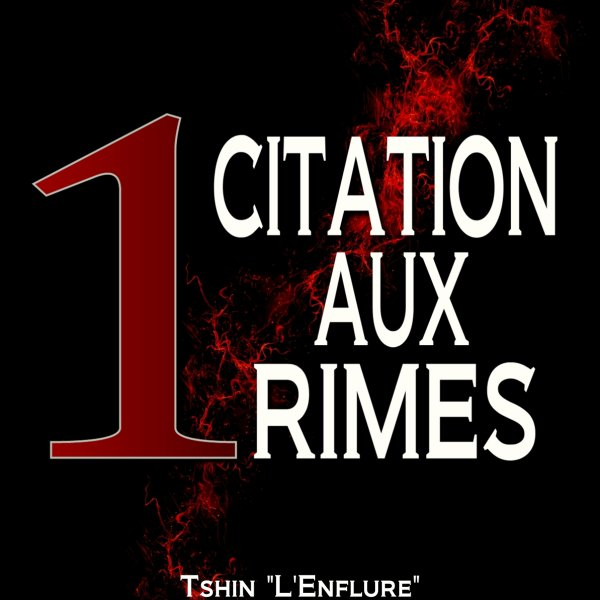Tshin L'Enflure - 1 Citation aux rimes netape