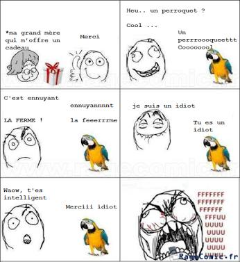 Drôle de perroquet...